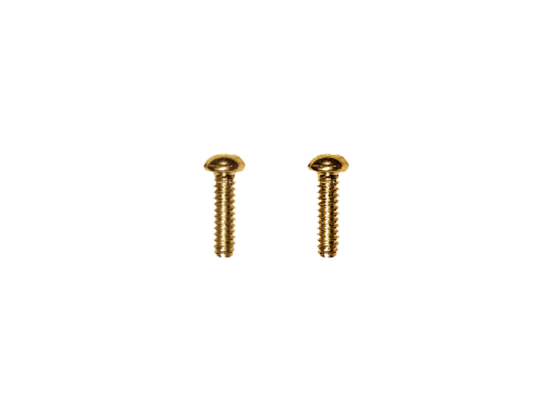 VPARTS SSW-1 US style lever switch mounting screws (GD)