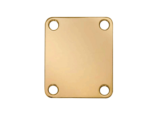 BOSTON NP-64 neck plate (GD)